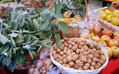 Politica agraria ed alimentare